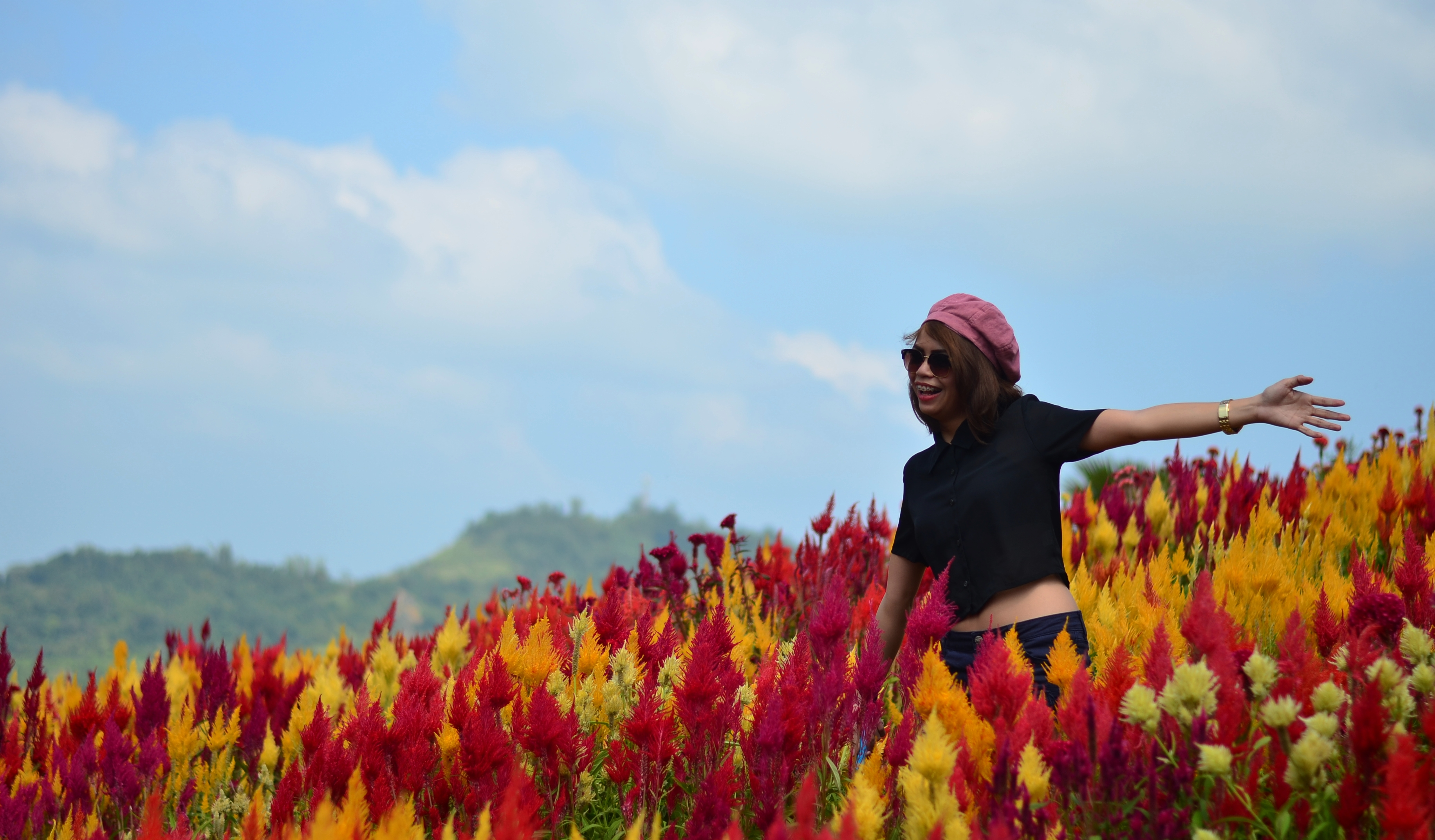 Sirao Flower Farm- Mini Amsterdam Garden Of Cebu